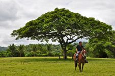 Free A Man On Horseback Royalty Free Stock Photos - 18288258