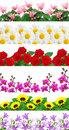 Free Flowers Background Royalty Free Stock Images - 18295689