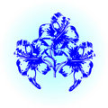 Free Abstract Blue Lily Stock Photo - 18299720