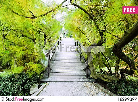Free Japanese Bridge Royalty Free Stock Photography - 18299397