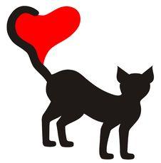 Free Black Cat Royalty Free Stock Image - 18290246