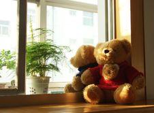 Free Toy Bear Stock Photos - 18292303
