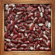 Free Kidney Beans Stock Image - 18292781