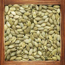 Free Pumpkin Seeds Stock Image - 18293081