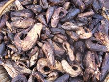 Free Smoked Fish For Sale In Mali Stock Photography - 18293842