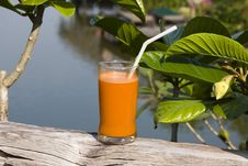Free Carrot Juice Stock Photo - 18294350