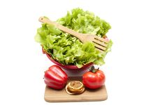 Free Endives Salad With Fork Royalty Free Stock Images - 18295639