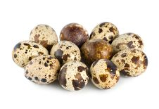 Free Quail Eggs Stock Photography - 18296392