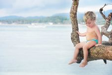 Free Cute Child On A Tree Royalty Free Stock Photos - 18297108