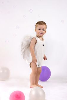 Free Studio Portrait Of Little Boy Royalty Free Stock Photos - 18297178