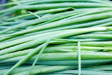Free Fresh Green Onions Stock Photos - 18298623