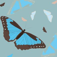 Free Blue Butterfly Stock Photography - 18299092