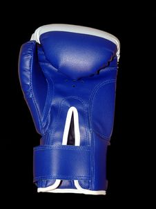 Free Boxing Glove On The Black Background Royalty Free Stock Photos - 1831088