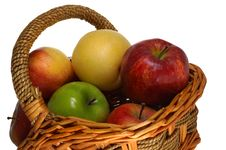 Free Apples Stock Photos - 1831543