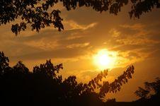Free Sunrises And Tree Royalty Free Stock Photos - 1832148