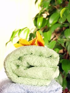 Free Towels Stock Image - 1832621