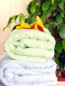 Free Towels Stock Image - 1832651