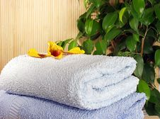 Free Towels Stock Photos - 1832663