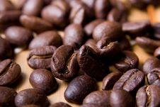 Free Coffee Beans Royalty Free Stock Photo - 1835185