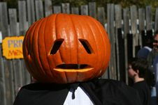 Free Mr. Pumpkin Head Royalty Free Stock Image - 1836036
