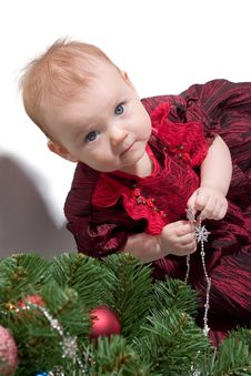 Free Little Girl And Christmas Tree Royalty Free Stock Photos - 1839468