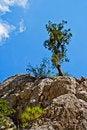 Free Wild Rocks Stock Image - 18302131