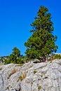 Free Wild Rocks Stock Photo - 18302220