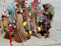 Free Camel Stock Photo - 18308310
