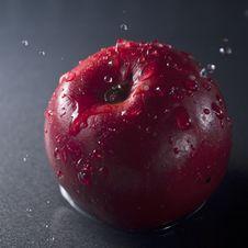 Free Apple Stock Photos - 18302653