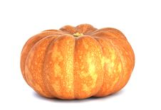Free Pumpkin Royalty Free Stock Photography - 18304067