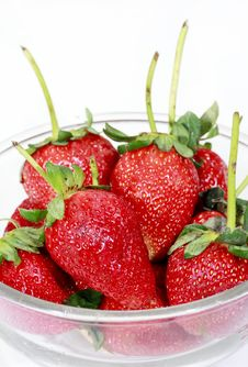 Free Red Strawberry In A Bowl Isolated On White Royalty Free Stock Photos - 18308068