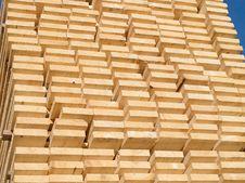 Free Fresh Wooden Studs Stock Photos - 18308933