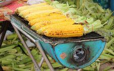 Free Corn Grills Stock Photos - 18310863