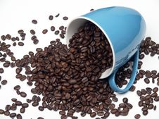 Free Coffee Royalty Free Stock Image - 18315646