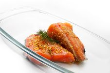 Isolated Salmon Stock Images