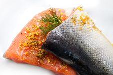 Isolated Salmon Stock Image