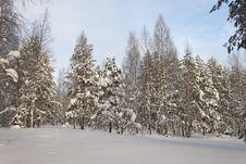 Free Winter Landscape Stock Photography - 18318172