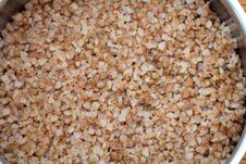 Free Buckwheat Royalty Free Stock Photo - 18318905