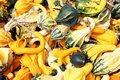 Free Pumpkins Variety Stock Photo - 18325690