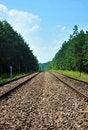 Free Railroad Tracks Stock Image - 18328021