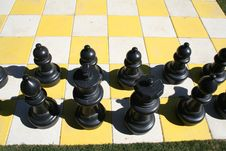 Free Black Chess Pieces Stock Photography - 18324662