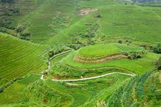 Free Rural Landscape Of Paddy Terraces Stock Image - 18326101