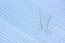 Free Stripe Of Snow Pattern Stock Photography - 18326342