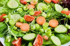 Free Fresh Salad Royalty Free Stock Photography - 18327437