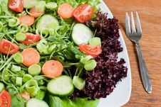 Free Fresh Salad Stock Photography - 18327682