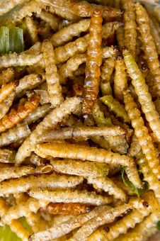 Fried Bamboo Larvae. Close-up Royalty Free Stock Image