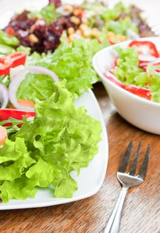Free Fresh Salad Stock Photos - 18328823