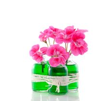 Pink Geranium In Glass Vases Stock Image