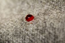 Free Blood Drop On Whool Texture Stock Images - 18330944