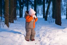 Free Adorable Baby Cry On Snow Road In Forest Stock Photos - 18333983